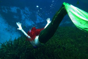 Mermaids in Neverland: Our Culture of Hate